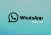 Download WhatsApp Watusi IPA