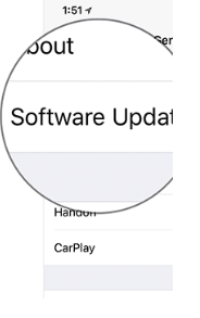 Hit the Software Update option